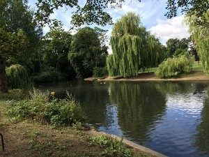 A photo of one of Luton's beautiful parks
