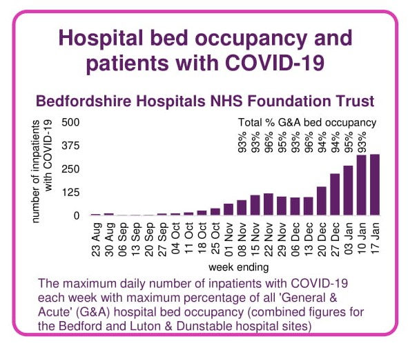 Image showing graph of number of hotpital patients in Bedfordshire hosptals with Covid-19