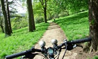 Leafy cycle route in Luton